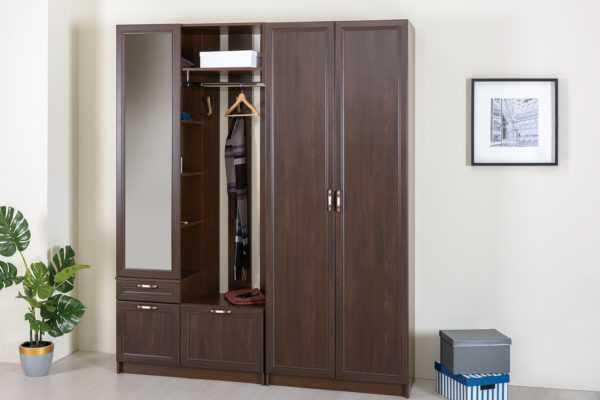 dsc9072 1 600x400 - МАДЭРА 13.40 Шкаф 2-х дверный (венге каштан)
